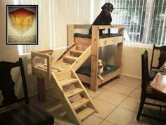 Doggy Bunk Bed From Pallets.... My puppys want this who wants to help me build it?