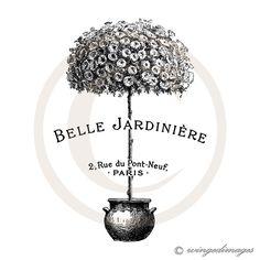 French Topiary Sepia Belle Jardiniere Art Print Digital Collage Home Decor Garden Illustration Wall Hanging. Pub Vintage, Vintage Labels, French Vintage, Garden Illustration, Botanical Illustration, Botanical Prints, Impressions Botaniques, Etiquette Vintage, Images Vintage