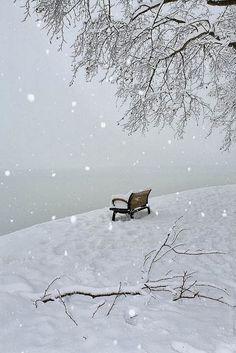 C'est ce paysage que nous avons chez moi, au Québec de novembre à avril.  Les hivers sont longs ici.
