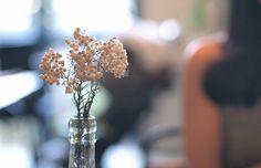 Baum-kuchen - Through the memories of summers / Lisa Kawai