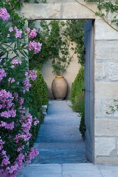 Lovely enclosed garden in Provence