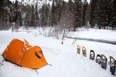 Winter Camping in Yellowstone