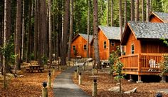 Yosemite National Park Lodging Lodging Options in Yosemite National Park Yosemite National Park Lodging. Yosemite lodging is situated in the national park, a beautiful piece of countryside that cov… Best Hotels In Yosemite, Yosemite National Park Cabins, Yosemite Lodging, State Park Cabins, Yosemite Camping, Camping In England, Camping In Ohio, Route 66, Rustic Homes