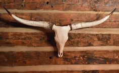 Reproduction Longhorn Steer Horns for your home $155.50 at www.southernstyleaccents.com