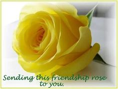 Sending this friendship rose to you.