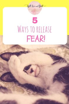 Fear can hold us back in so many ways. Find out how to release it in this article!
