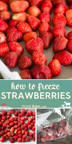 Here is everything you need to know in order to properly wash, store, freeze, or puree strawberries so that you can enjoy them for the longest period of time! #strawberries #strawberry #howto #freeze #store #fresh #puree Healthy Diet Recipes, Healthy Fruits, Low Calorie Recipes, Vegan Recipes, Snack Recipes, Kitchen Recipes, Easy Recipes, Healthy Food, Dinner Recipes
