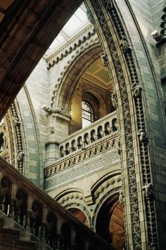 like the layering of textures and shades of neutrals combining.   Arches, National History Museum, London | Incredible Pictures
