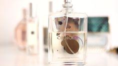 "The ""i don't like perfume"" Perfume Phone, Beauty, Telephone, Mobile Phones"