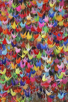 origami/paper cranes hanging from tree Origami Paper Crane, Origami Swan, Origami Cranes, Oragami, 1000 Paper Cranes, 1000 Cranes, Diy And Crafts, Arts And Crafts, Paper Crafts