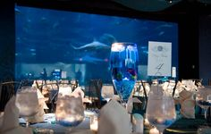#Wedding under the #sea #theme