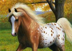 AN AUTUMN GALLOP.....this spirited golden appaloosa is enjoying a gallop across the pasture on a fall day....PRINTED