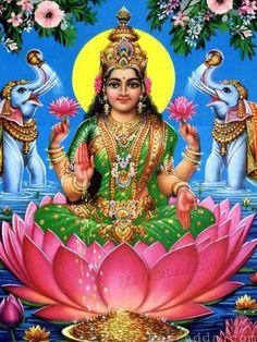 Navratri Puja will help you overcome all your negativities. Flourish with wealth on this Navratri by offering Homam to Lakshmi, Saraswathi & Durga. Lakshmi Photos, Lakshmi Images, Krishna Images, Devi Images Hd, Navratri Puja, Shri Yantra, Lord Shiva Family, Lord Vishnu Wallpapers, Lord Murugan