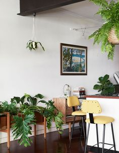 The 1990s Meets Urban Jungle In This Inner-City Oasis