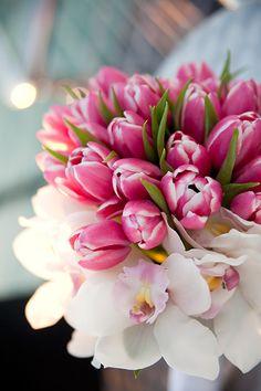 Flower Pots, Flowers, Wedding Photography, Portraits, Weddings, Rose, Plants, Flower Vases, Plant Pots