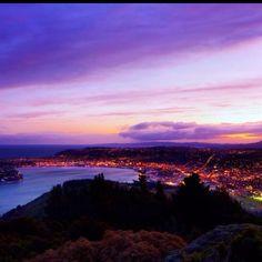 Home - Dunedin