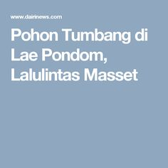Pohon Tumbang di Lae Pondom, Lalulintas Masset