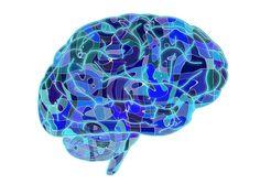 DEGLUCIÓN y ALIMENTACIÓN INFANTIL (feeding and swallowing disorders): Cerebro y Dieta