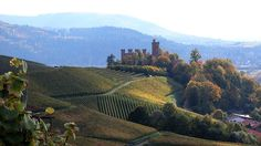 Ortenberg Castle in front of the Black Forest mountains