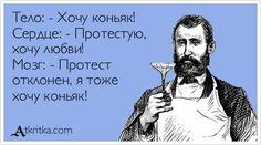 atkritka_1412779779_550.jpg (425×237)
