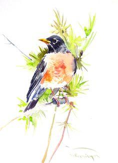 American Robin, 12 x 9 in, original watercolor painting, robin art, robin bird