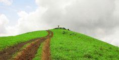 Kodachadri trekking - Kodachadri is sorrounded by the foggy hills in the lap of nature, situated near Shimoga.