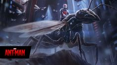 evangeline lilly wasp | ANT-MAN: Evangeline Lilly's Look Revealed and Hope van Dyne's Hair ...