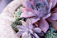 Floral arrangement - Lisa Romerein/The Image Bank/Getty Images