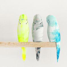 Pete Cromer resin budgie sculptures.