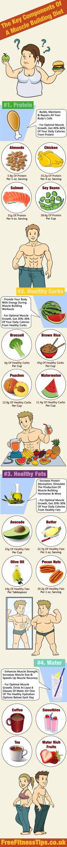 The Key Components Of A Muscle Building Diet