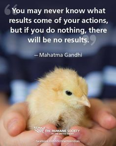 You may never know what results come of your actions, but if you do nothing, there will be no results. #MahatmaGandhi