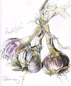 New fruit sketch water colors Ideas Watercolor Fruit, Watercolor Sketch, Watercolor Paintings, Sketchbook Inspiration, Art Sketchbook, Painting Inspiration, Botanical Illustration, Botanical Prints, Fruit Sketch