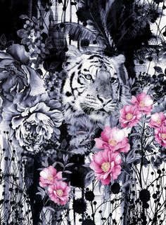 Poster   TIGER von Riza Peker   more posters at http://moreposter.de