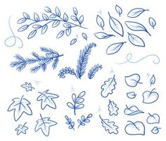 Set of different leaves and branches. Hand drawn vector illustration.