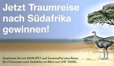 Gewinne mit Qualipet und etwas Glück eine Traumreise für zwei Personen nach Südafrika. https://www.alle-schweizer-wettbewerbe.ch/gewinne-suedafrika-traumreise/