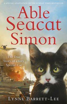 "Read ""Able Seacat Simon: The True Story of a Very Special Cat"" by Lynne Barrett-Lee available from Rakuten Kobo. The abridged, junior edition of the story of Able Seacat Simon, beloved hero of the high seas. Kitten Drawing, Michael Morpurgo, Beautiful Kittens, Mama Cat, Kitten Rescue, Cat Breeds, New Friends, True Stories, Cats And Kittens"