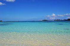 I took this on a beach in Nassua Bahamas Feb 2011