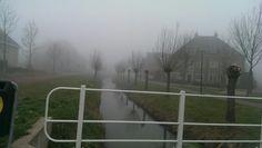 2014 Mist weer