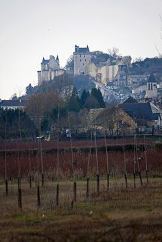 Château de Chinon in the Loire Valley, France Loire Valley France, French Chateau, North Sea, European Travel, Monument Valley, Ocean, Places, Buildings, Outdoor