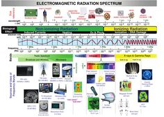 What Are Safe Levels of Electromagnetic Radiation? | DefenderPad
