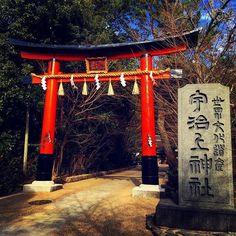 京都の世界遺産「宇治上神社」 日本一古い神社