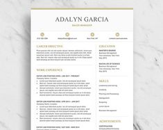 Modern Resume Template Word  Page Resume  Cv Template
