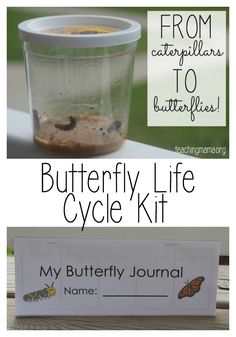 Butterfly Life Cycle Kit and Journal -- Free printable to document the changes from a caterpillar to a butterfly!