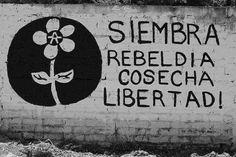 imagenes de rebeldia - Buscar con Google