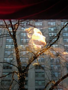 Image of Ralph Lauren window with reflection of buildings 12-5-13 Chicago, IL