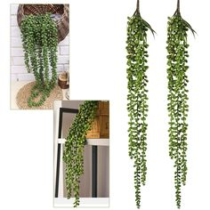 Light Green perfektchoice Artificial Greenery Hanging Wall Plastic Succulents Plants Fake String of Pearls Flower DIY Wall Crafts Decoration