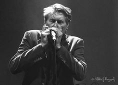 BRYAN FERRY - MANCHESTER - Mudkiss Photography