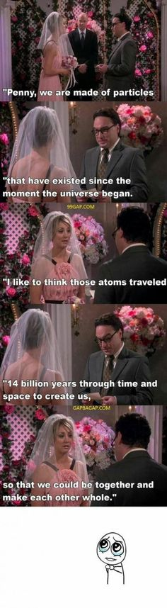 The Big Bang Theory – – funny wedding quotes Funny Wedding Vows, Wedding Quotes, Wedding Humor, Wedding Ideas, The Big Bang Therory, Tbbt, Leonard And Penny, Big Bang Theory Funny, Big Bang Theory Quotes