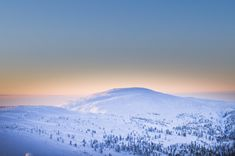Pyhä area in Lapland is a row of beautiful fells. The name Pyhä means holy. They looked special in the eye of the ancient Sámi people, but also geologically these fells are something else: They've … Lapland Finland, Something Else, Year Old, Arctic, Ranger, The Row, Mountains, Parks, Nature