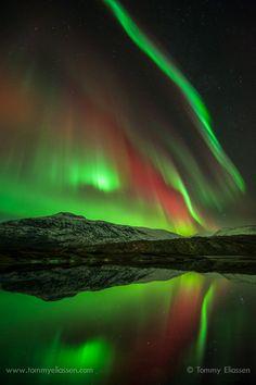 Vivid Aurora